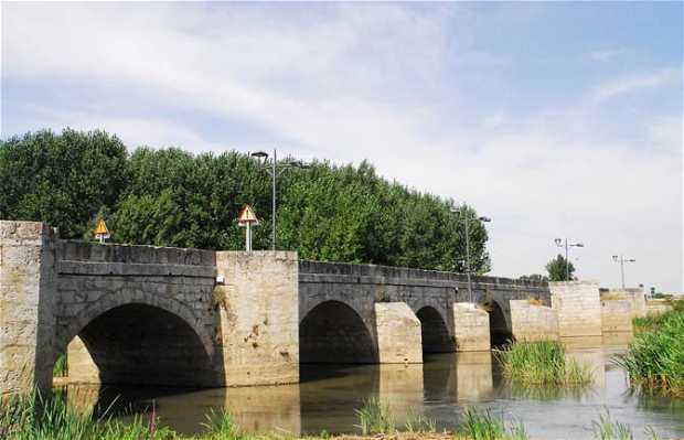 Puente de Monzón de Campos