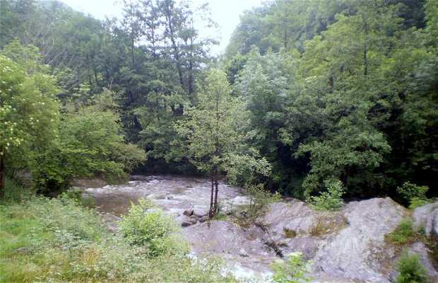 Río Argoza a su paso por Bárcena Mayor