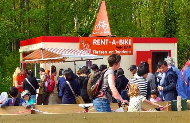 Rent-a-Bike Van Dam
