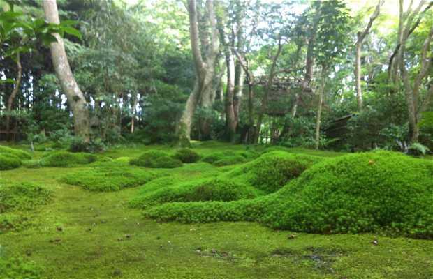 Gio-ji Templo