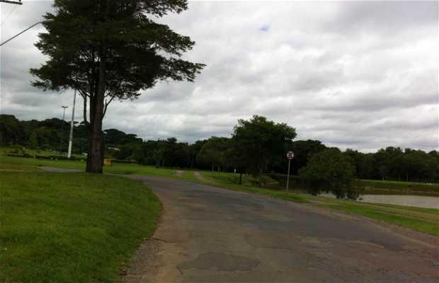 Parco Tingui