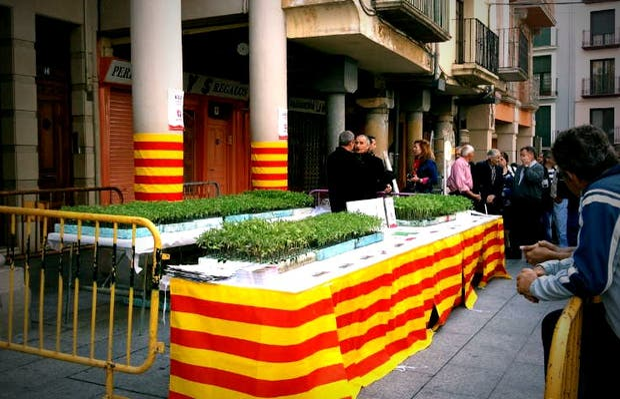 Fiesta del Plantero