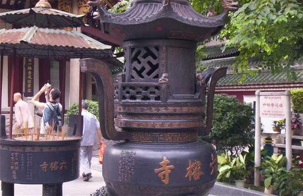 Tempio di Sei Alberi Di Banyan