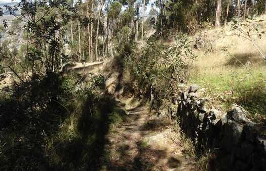 Carretera que baja desde Cachacancha hasta Quenuayoc