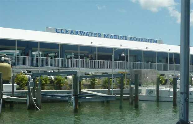 Aquário Marinho de Clearwater