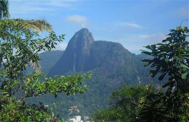 Trilha do Morro São João
