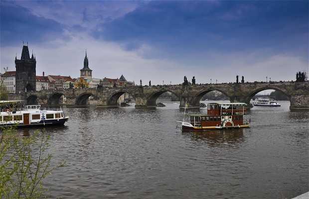 Fleuve Moldava