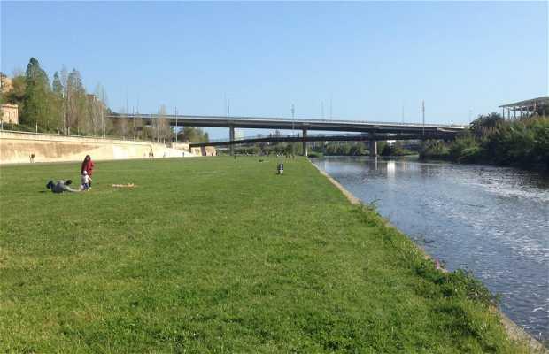Parc fluvial del Besos
