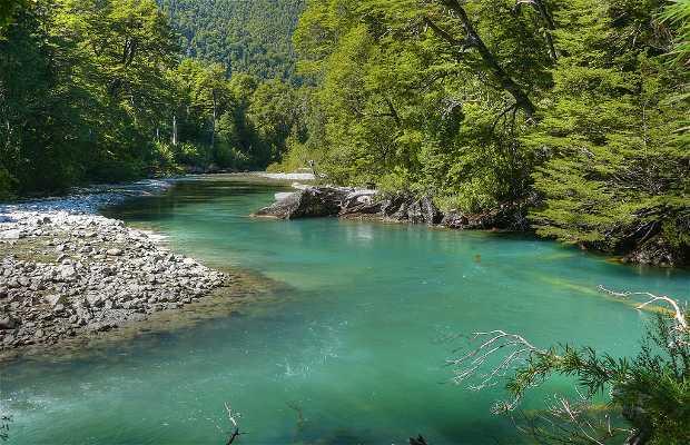 Parco Nazionale Los Alerces