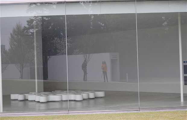 Museo de Arte Contemporáneo del S.XXI