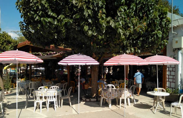 Drosia Grill Restaurant