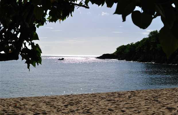 Playa de Petite Anse Deshaies