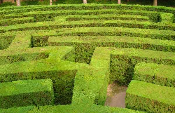 Labirinto de Villa Pisani