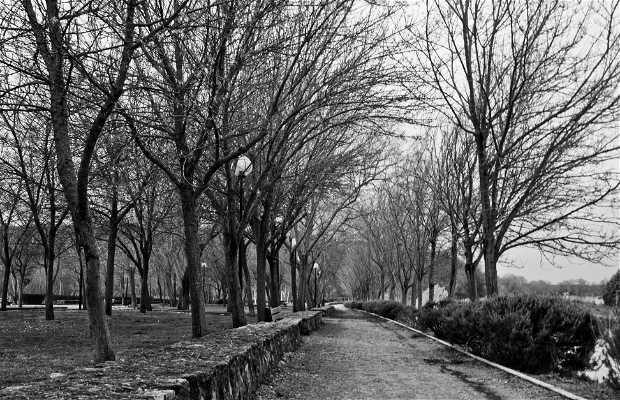 Parque de Olivares Zamora