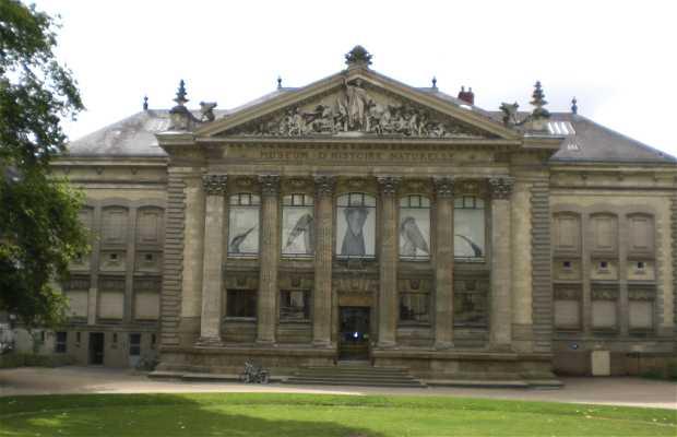 Plaza Louis Bureau