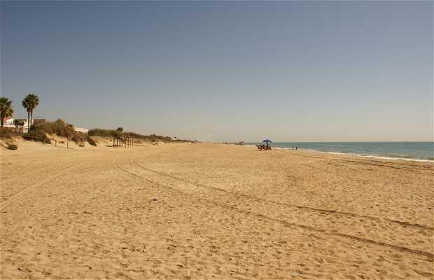Beach in Urbasur
