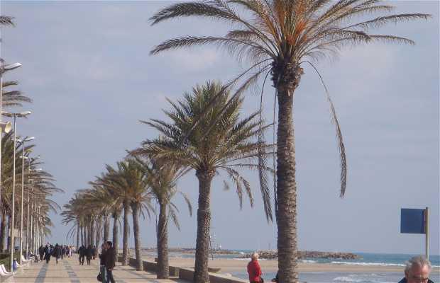 Playa de Cunit