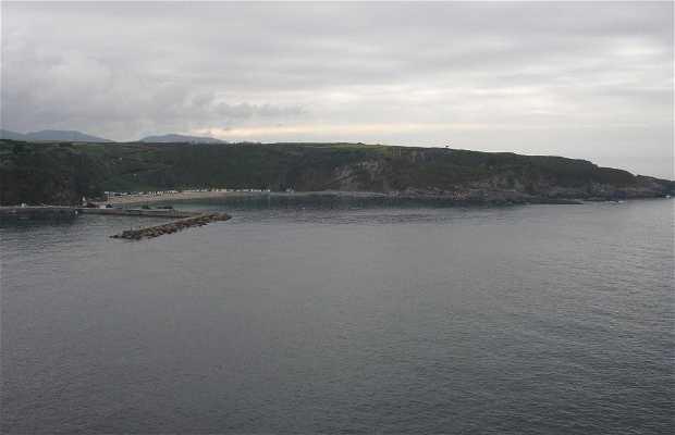 Luarca Port