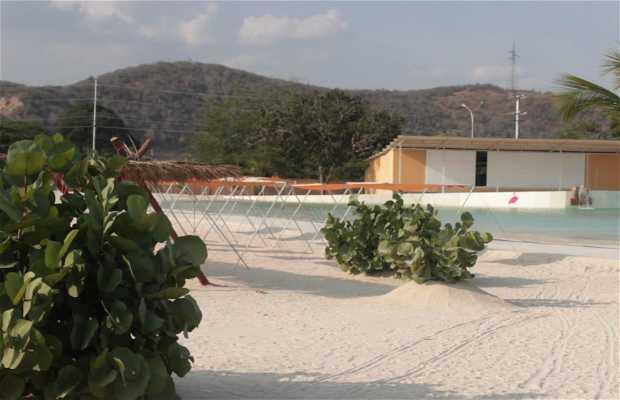 Arena Parque Acuático