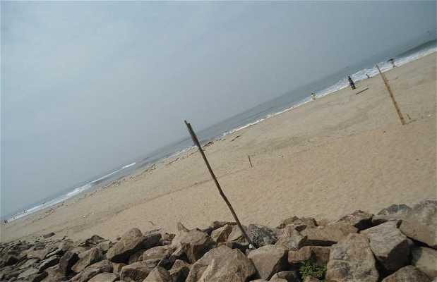 Playa de Cochin