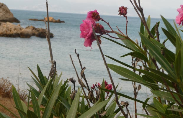 Playas d'Empúries