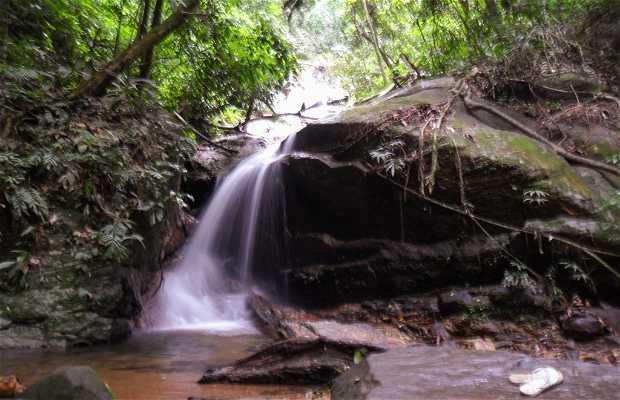 Travessia Serra da Carioca - Parque Lage X Horto