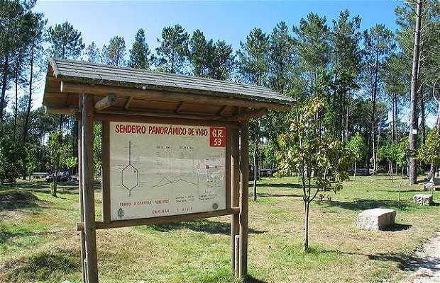 Parc forestier Zamans