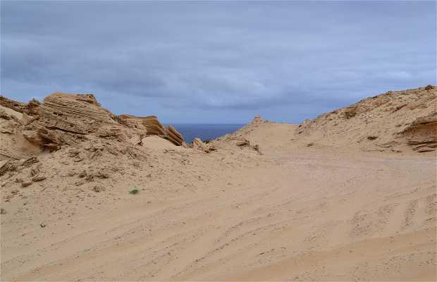 Porto Santo Desert