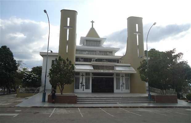 Parroquia Iglesia Divino Salvador Salvatorianos