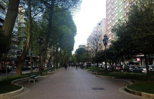 Alameda de San Fernando