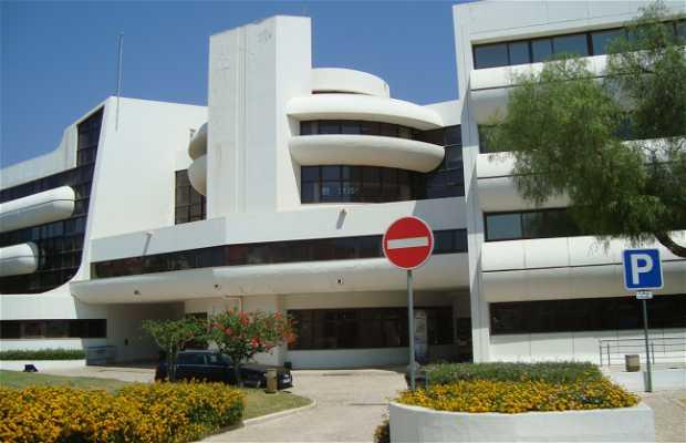 Cámara Municipal - Governo municipale