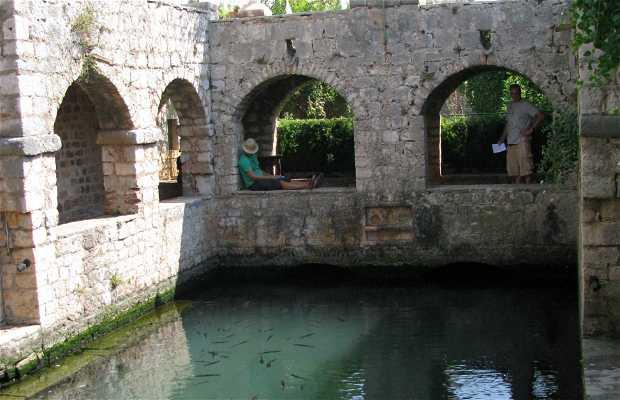 Chateau de Tvrdalj (Villa de Petar Hektorović)