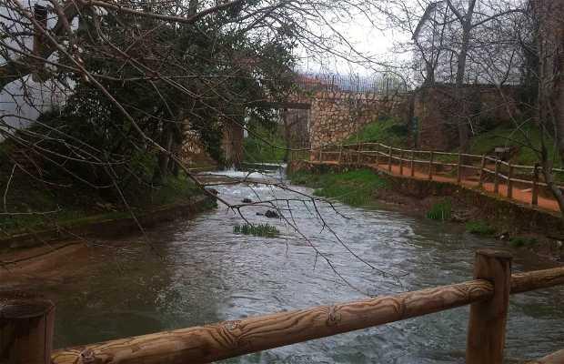 Rio del salobre