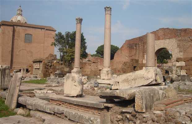 Basilique Emilia