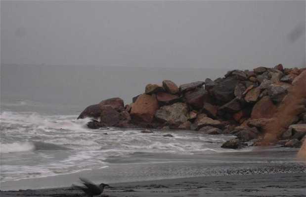 Playa de Amritapuri