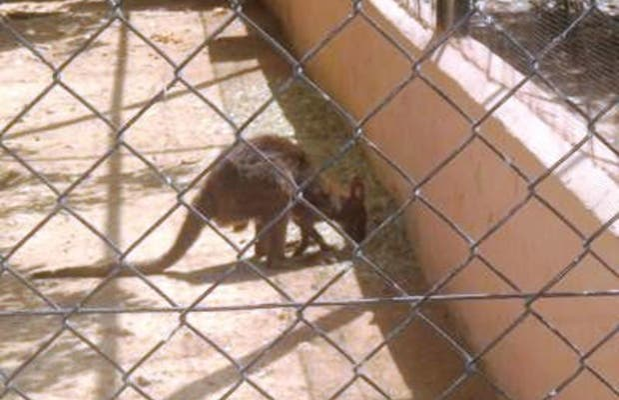 Zoobotanico Jerez