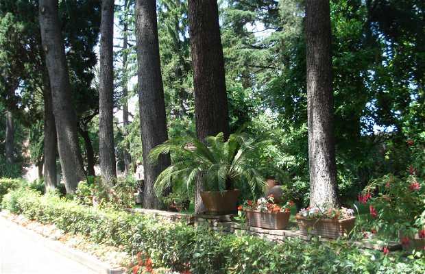 Jardines Iglesia San Stefano Rotondo