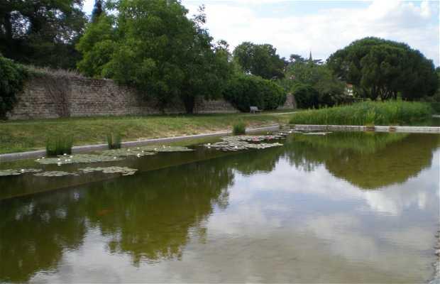 Parque del Ramier
