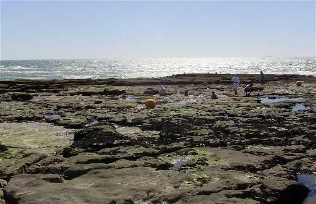 Ambleteuse Beach