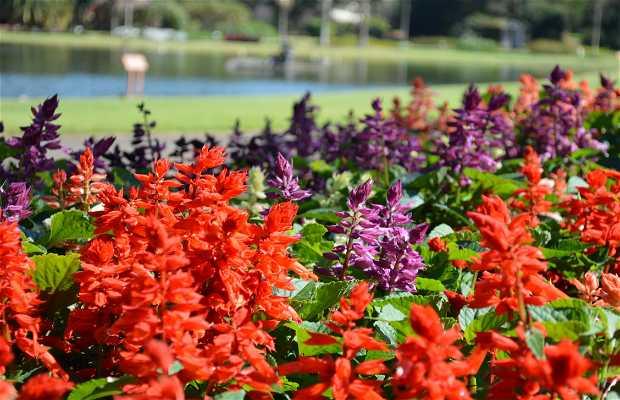 Jardim Botânico Instituto Plantarum