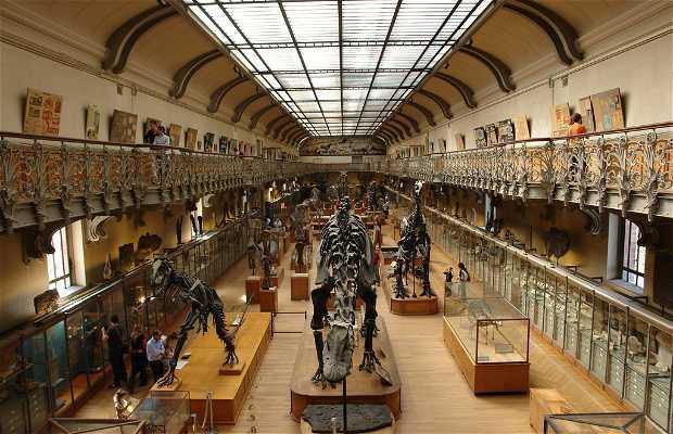 Museo nazionale di storia naturale di Parigi