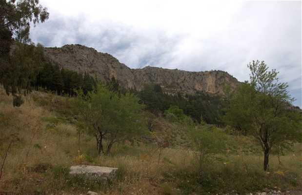 Consolino Mount