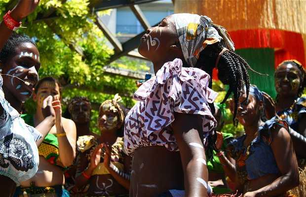Festival Etnosur