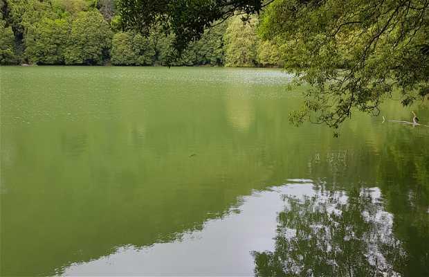 Laguna del Congro