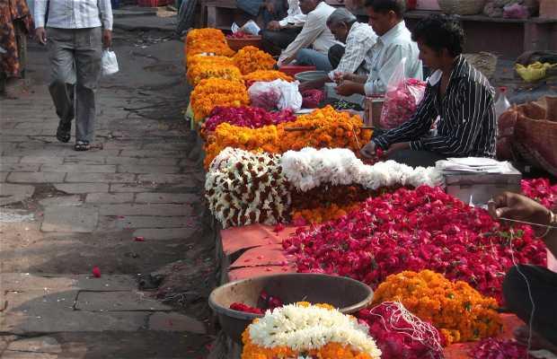 Mercado de las Flores Choti Chopper