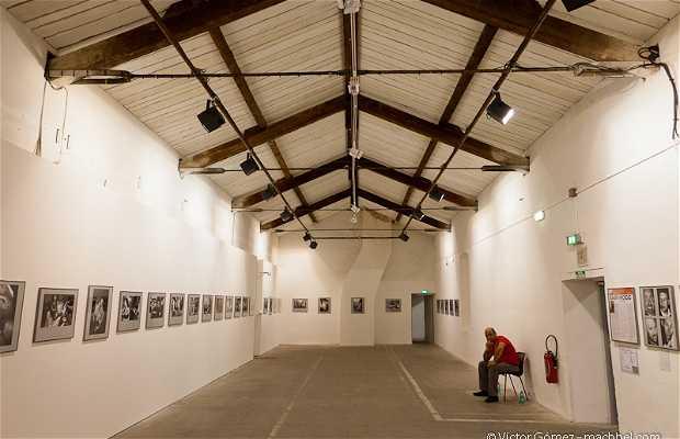 Visa pour l'image - Festival internacional de fotoperiodismo