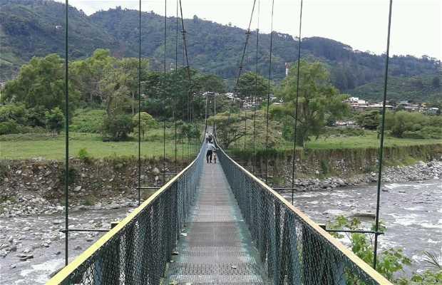 Puente colgante Orosi