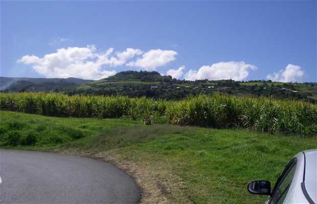 Etang Salé Les Bains view