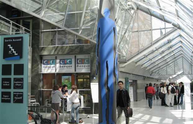 Campus Universitario Leonardo da Vinci - Pôle Universitaire Leonard De Vinci