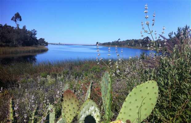 Lac Miramar